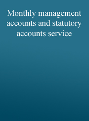 Monthly management accounts and statutory accounts service